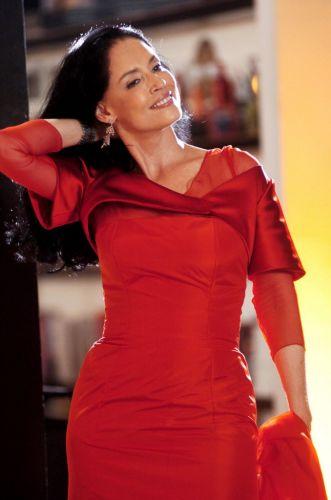 Sonia Braga em cena como a artista plástica Tônia Werneck da novela