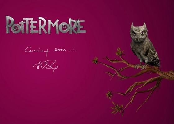 Site Pottermore.com exibe contagem regressiva para surpresa da escritora J.K. Rowling sobre a saga de Harry Potter (16/6/2011) - Reprodução