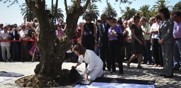 Viúva de José Saramago, Pilar del Río deposita aos pés de uma oliveira centenária as cinzas do escritor que faleceu há um ano, em Lisboa - PAtricia de Melo/AFP