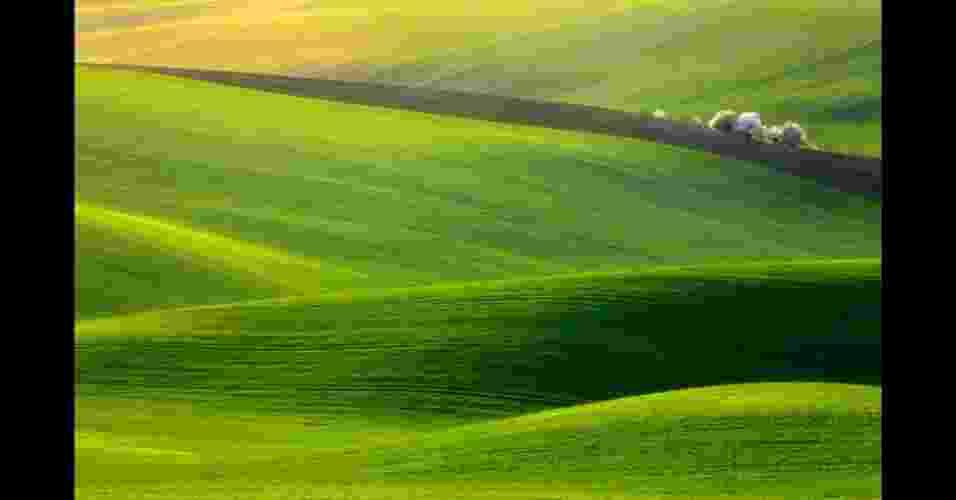Primavera, de Krzysztof Browko, Polônia, ganhou como melhor foto de viagem da categoria Aberta - Cortesia do Sony World Photography Awards 2012